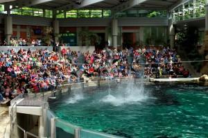 Volle Besucherränge im Delfinarium des Zoo Duisburg | Foto: zoos.media